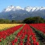 Montana nires sur chalten santacruz argentina